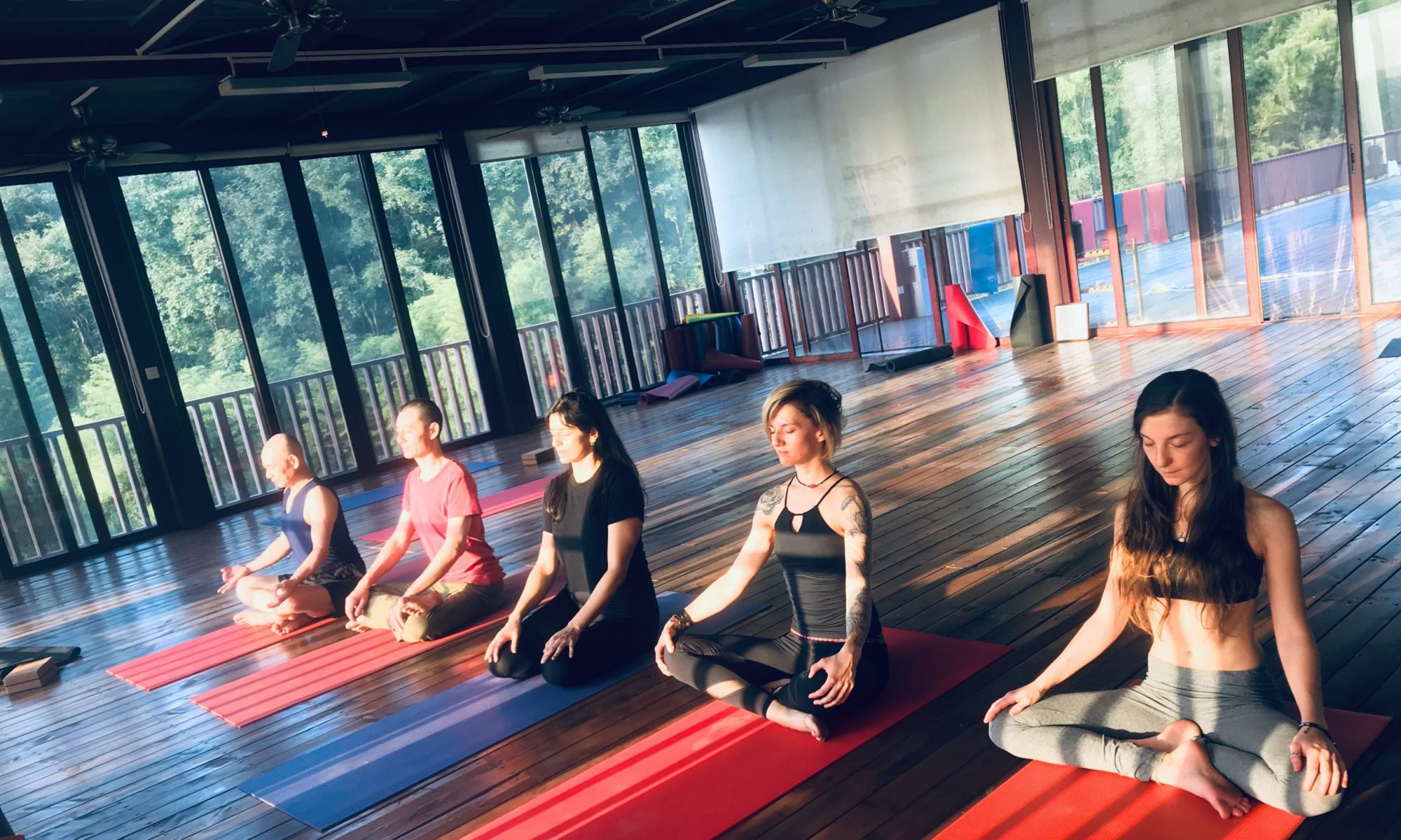 Dharma Yoga Studio